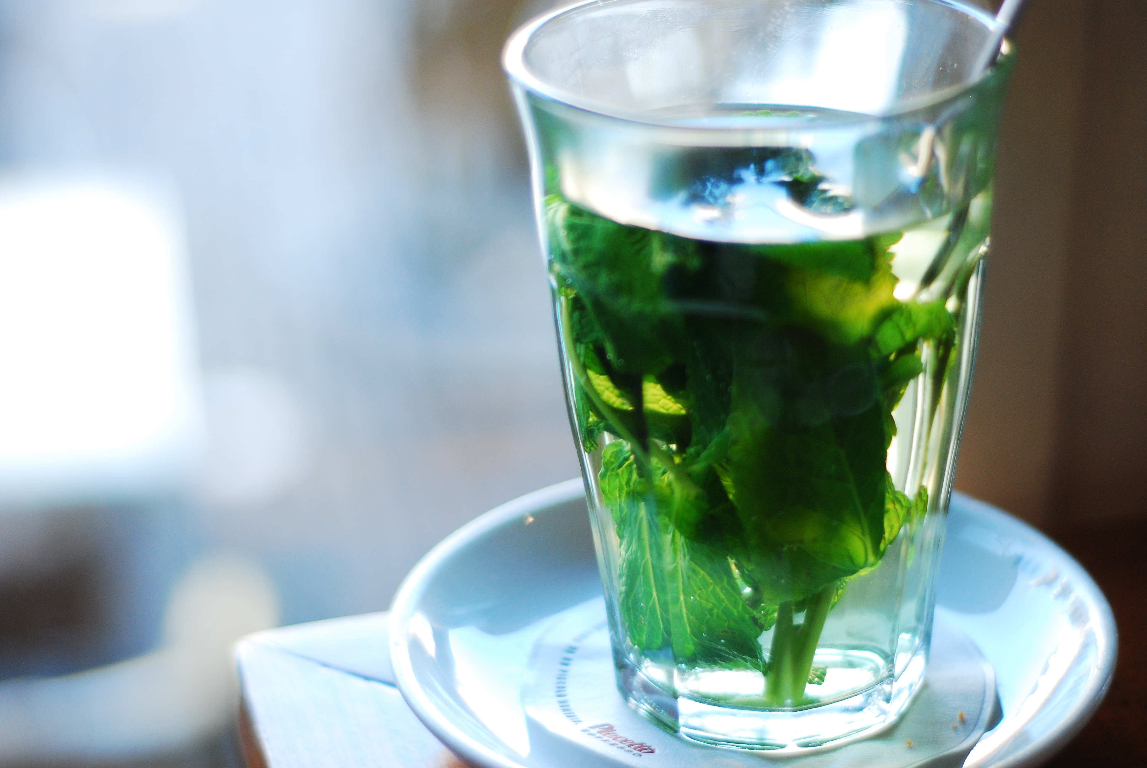Fresh Mint Tea - Copyright LosAngelas