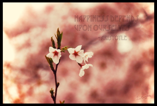 Blossoms 10.2 - Copyright LosAngelas