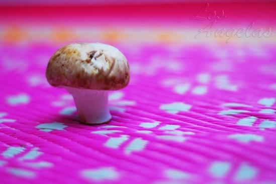 Mushrooms and garlic 10