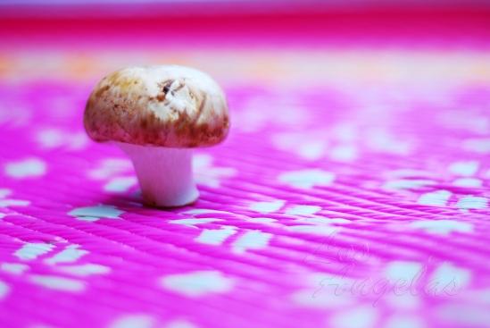 mushrooms and garlic 11