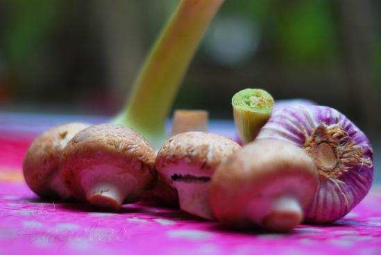 Mushrooms and garlic 5