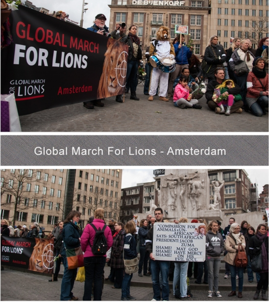 Global March For Lions - Blog 2