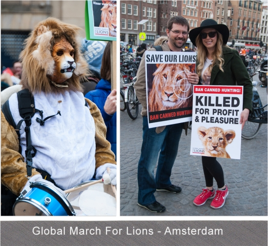Global March For Lions - Blog 3