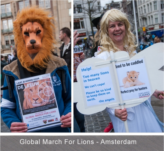 Global March For Lions - Blog 5